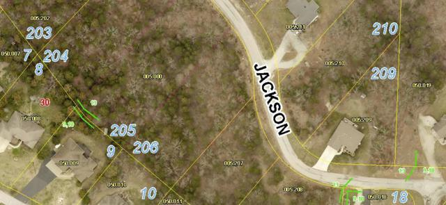 Lot 206 Jackson Lane, Branson West, MO 65737 (MLS #60143545) :: The Real Estate Riders