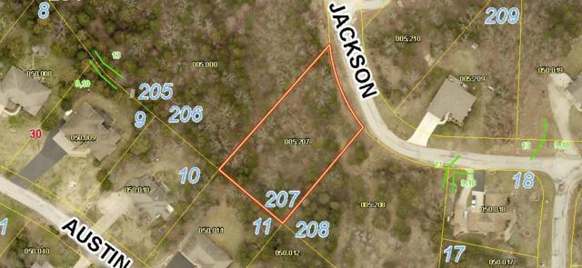 Lot 207 Jackson Lane, Branson West, MO 65737 (MLS #60143549) :: The Real Estate Riders