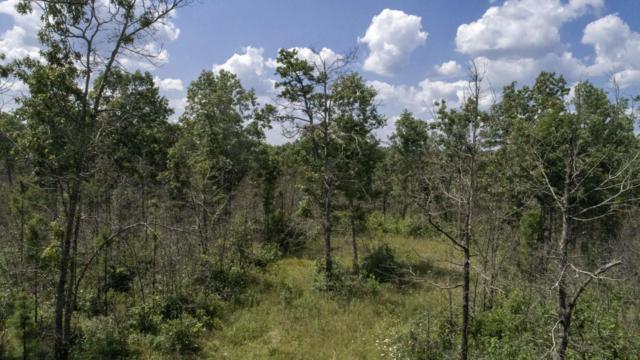 Tbd Lake Way, Winona, MO 65588 (MLS #60143600) :: Massengale Group
