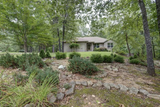 246 Hoot Owl Point, Highlandville, MO 65669 (MLS #60143617) :: Team Real Estate - Springfield