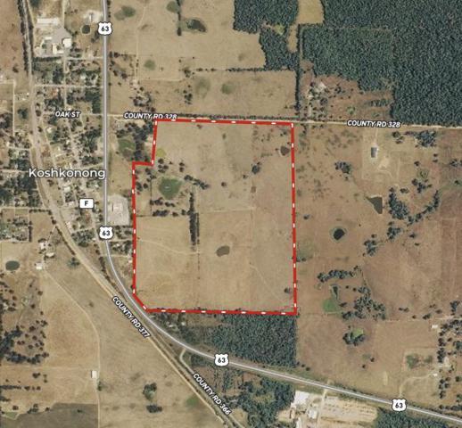 000 N County Road 328, Koshkonong, MO 65692 (MLS #60143734) :: Sue Carter Real Estate Group