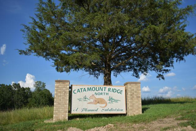 Lot 42 Catamount Ridge North, Branson West, MO 65737 (MLS #60143894) :: Massengale Group
