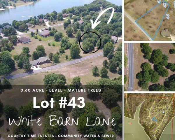 Lot 43 White Barn Lane, Cape Fair, MO 65624 (MLS #60143899) :: Sue Carter Real Estate Group