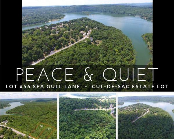 Lot 56 Sea Gull Lane, Cape Fair, MO 65624 (MLS #60143915) :: Sue Carter Real Estate Group