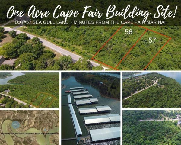 Lot 57 Sea Gull Lane, Cape Fair, MO 65624 (MLS #60143916) :: Sue Carter Real Estate Group