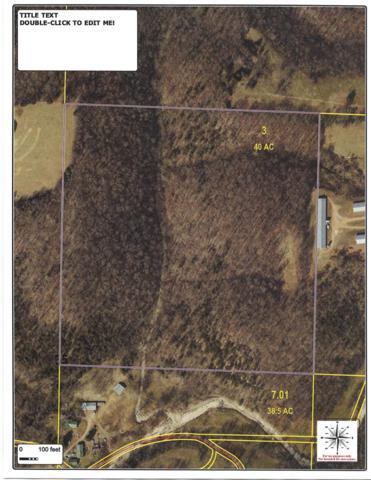 Tbd Farm Rd 1075, Washburn, MO 65772 (MLS #60143940) :: Massengale Group
