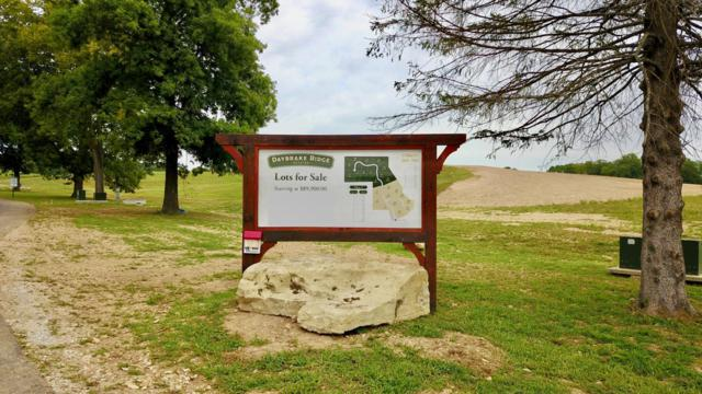 Lot #16 Lone Star Drive, Nixa, MO 65714 (MLS #60143958) :: Team Real Estate - Springfield