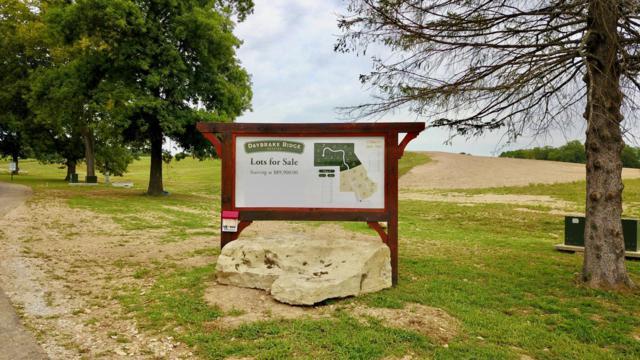 Lot  # 20 Autumn Way Drive, Nixa, MO 65714 (MLS #60143963) :: Team Real Estate - Springfield
