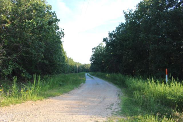 001 Timber Trail Road, Tunas, MO 65764 (MLS #60144060) :: Massengale Group