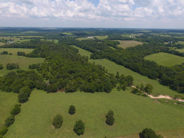 Tbd State Highway M, Billings, MO 65610 (MLS #60144065) :: The Real Estate Riders