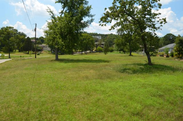 Lot 9 Birch Street, Blue Eye, MO 65611 (MLS #60144171) :: Sue Carter Real Estate Group