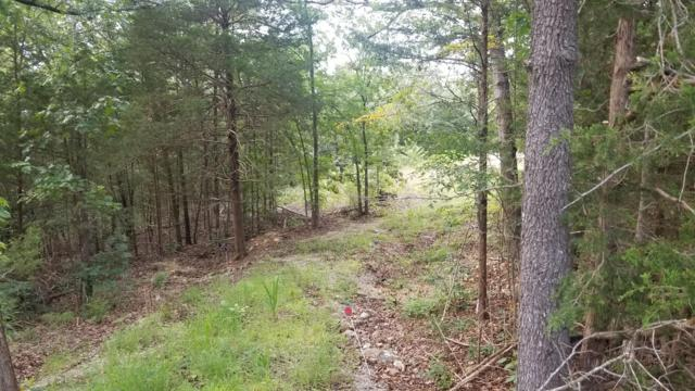 3877 State Hwy H Highway, Lampe, MO 65681 (MLS #60144332) :: Massengale Group