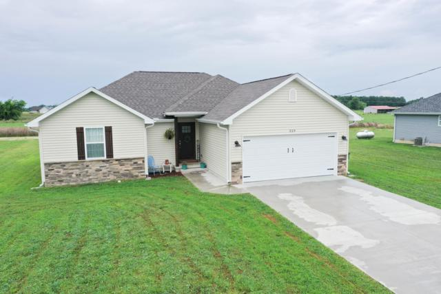 229 Velma Drive, Seymour, MO 65746 (MLS #60144459) :: Massengale Group