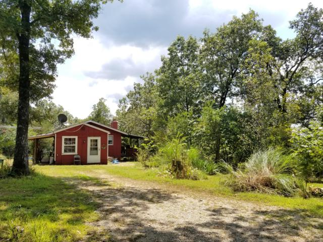 2151 Deer Lane, Kirbyville, MO 65679 (MLS #60144479) :: The Real Estate Riders
