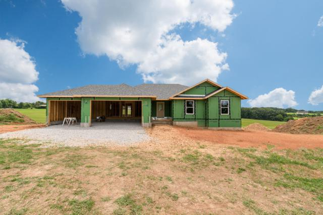 136 Ranch Estates Drive, Highlandville, MO 65669 (MLS #60144551) :: Massengale Group
