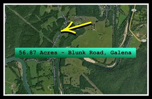 Tbd Blunk Road, Galena, MO 65656 (MLS #60144555) :: Sue Carter Real Estate Group
