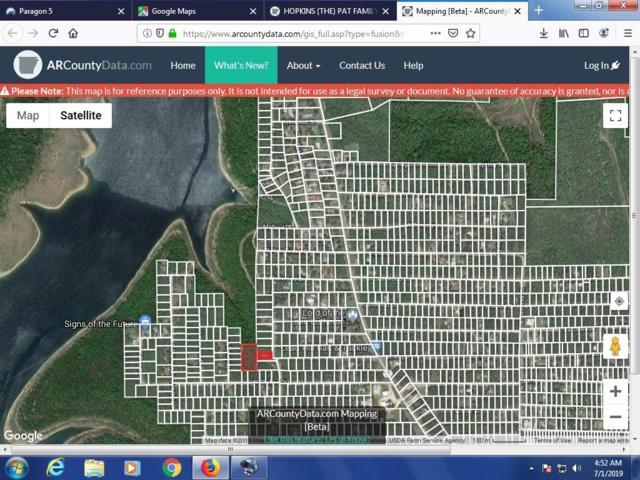 177 Japonica Street, Diamond City, AR 72644 (MLS #60144648) :: Massengale Group
