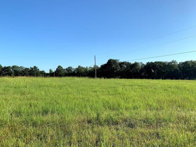 Tbd Buck Creek Drive, Protem, MO 65733 (MLS #60144755) :: Massengale Group
