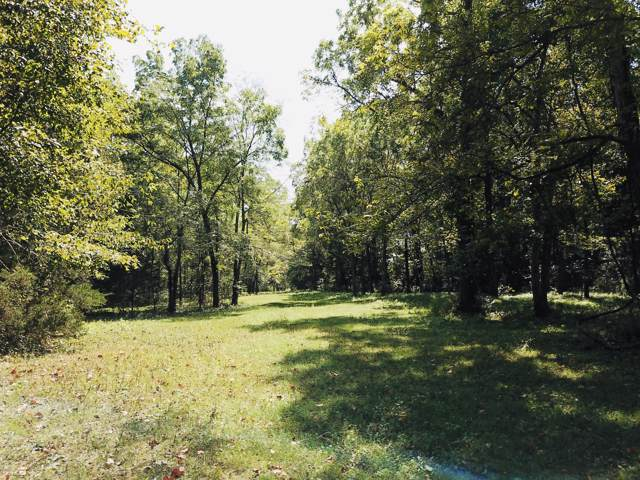 00 Highway 5, Hartville, MO 65667 (MLS #60147143) :: Sue Carter Real Estate Group