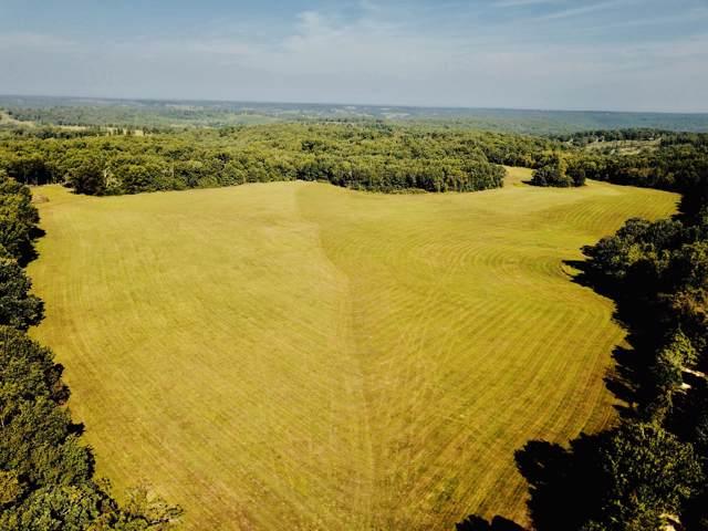 0 Dorris Cemetery Drive, Hartville, MO 65667 (MLS #60147467) :: Sue Carter Real Estate Group