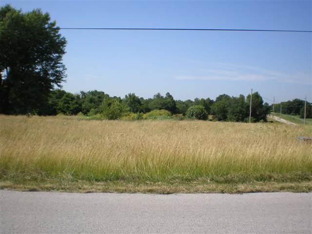 981 S Farm Rd 99, Springfield, MO 65802 (MLS #60147546) :: Sue Carter Real Estate Group
