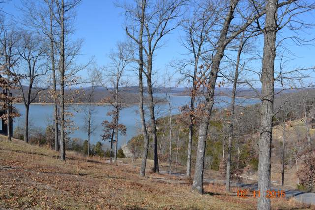 Lot 101 Pinnacle Shores Drive, Lampe, MO 65681 (MLS #60147575) :: Sue Carter Real Estate Group