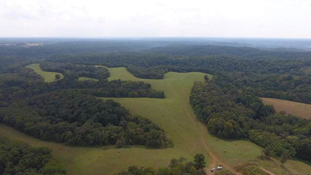 0 Old Missouri Road, Pineville, MO 64856 (MLS #60147739) :: Sue Carter Real Estate Group