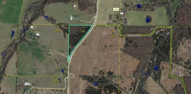 000 Hwy F, Mansfield, MO 65704 (MLS #60148006) :: Sue Carter Real Estate Group