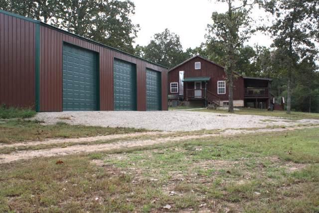 2193 County Road 147, Alton, MO 65606 (MLS #60148246) :: Sue Carter Real Estate Group