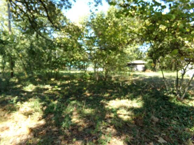 938 Post Oak Drive, Willow Springs, MO 65793 (MLS #60148291) :: Sue Carter Real Estate Group