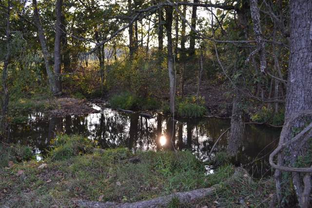 00 Manier Drive, Hartville, MO 65667 (MLS #60148389) :: Sue Carter Real Estate Group
