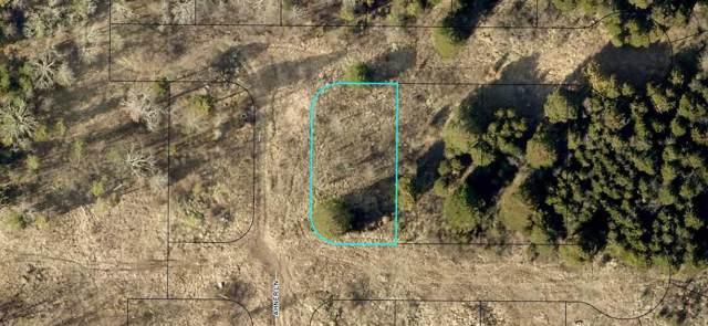 205 Bald Cypress Court (Lot 47), Hollister, MO 65672 (MLS #60148544) :: Massengale Group