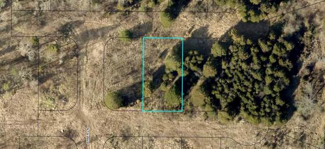 195 Bald Cypress Court (Lot 48), Hollister, MO 65672 (MLS #60148547) :: Massengale Group