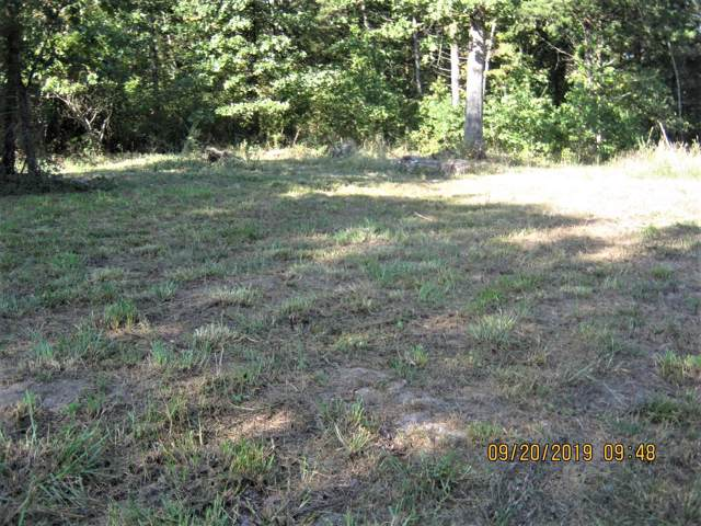 Lot 84 Green Cypress, Shell Knob, MO 65747 (MLS #60148695) :: The Real Estate Riders