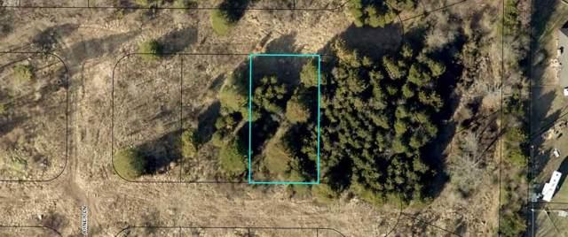 185 Bald Cypress Court (Lot 49A), Hollister, MO 65672 (MLS #60148960) :: Massengale Group