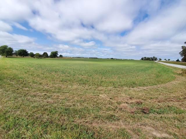 Tbd Farm Road 243, Rogersville, MO 65742 (MLS #60148963) :: Sue Carter Real Estate Group