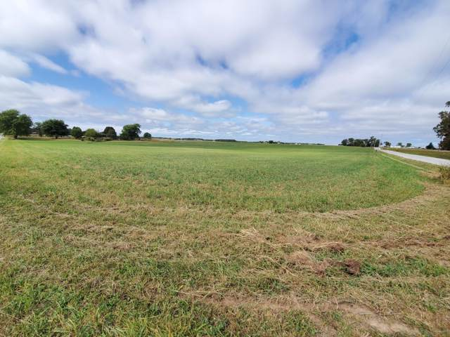 Tbd Farm Road 243, Rogersville, MO 65742 (MLS #60148971) :: Massengale Group