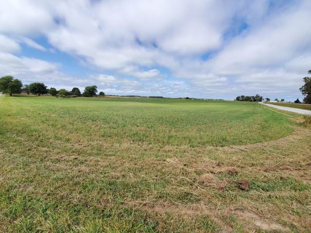 Tbd Farm Road 243, Rogersville, MO 65742 (MLS #60148974) :: Massengale Group