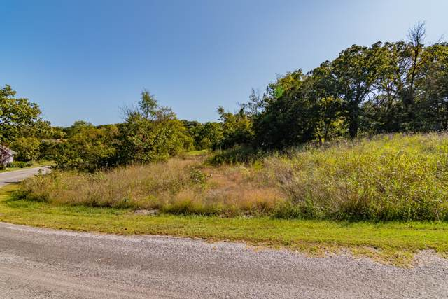 Lot 120 Hallie Drive, Blue Eye, MO 65611 (MLS #60149101) :: Winans - Lee Team | Keller Williams Tri-Lakes
