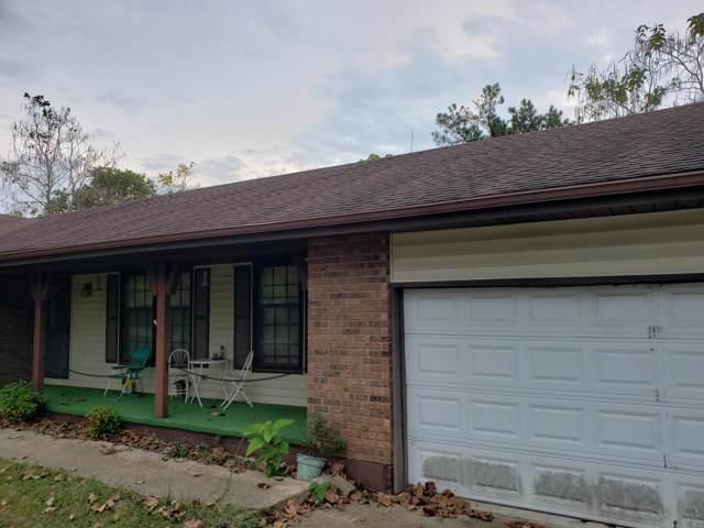152 Reid Drive, Theodosia, MO 65761 (MLS #60149367) :: Sue Carter Real Estate Group