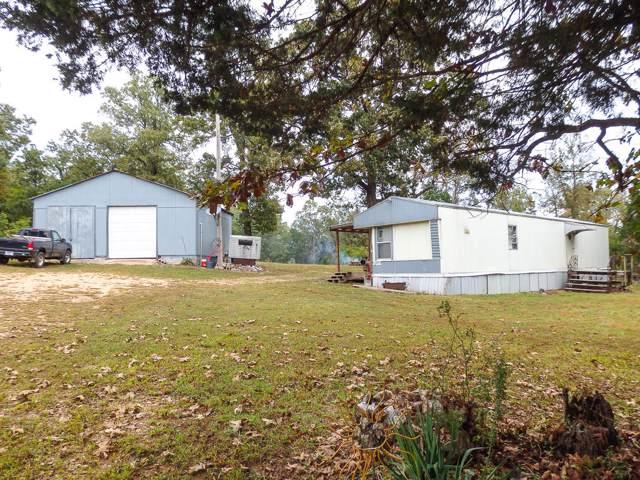 9387 Mc163, Theodosia, MO 65761 (MLS #60149371) :: Sue Carter Real Estate Group