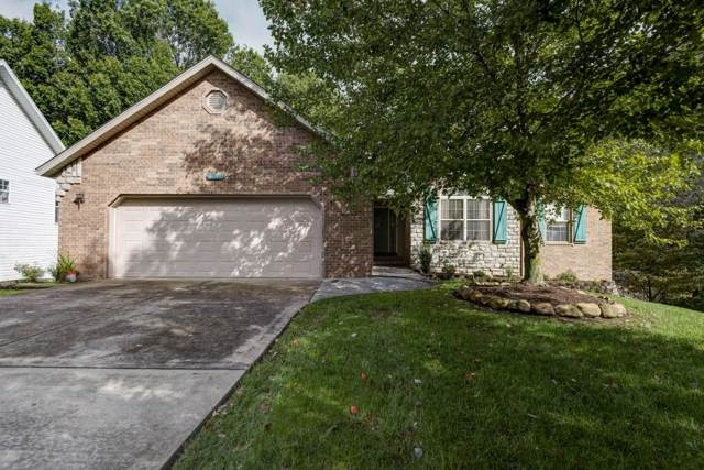 4618 S Elizabeth Drive, Springfield, MO 65810 (MLS #60149411) :: Sue Carter Real Estate Group