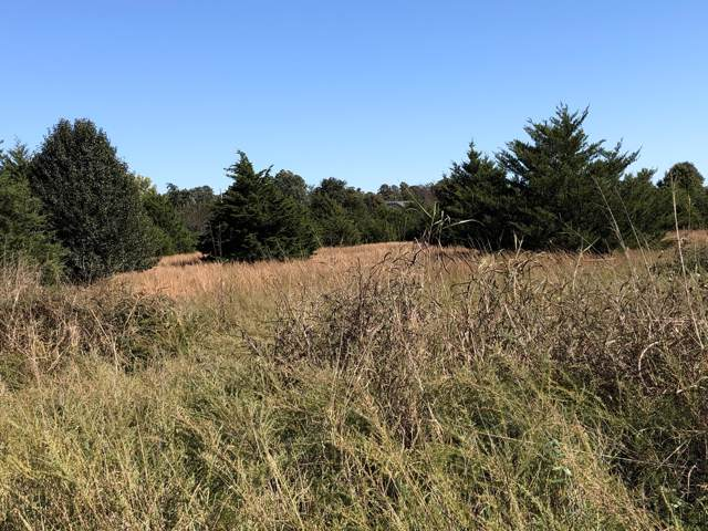 Lot 3 Lawrence 1127, Mt Vernon, MO 65712 (MLS #60149436) :: The Real Estate Riders