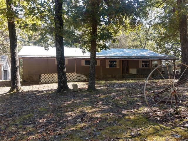 154 County Road 813A, Gainesville, MO 65655 (MLS #60149510) :: Sue Carter Real Estate Group