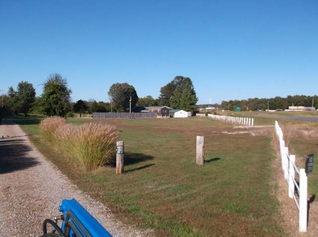 593 W Old Highway 65, Fair Grove, MO 65648 (MLS #60149584) :: The Real Estate Riders