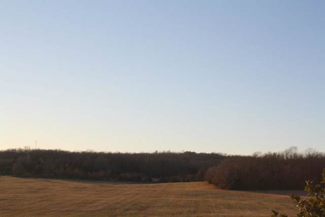 Tbd Deer Valley Drive, West Plains, MO 65775 (MLS #60149614) :: Sue Carter Real Estate Group