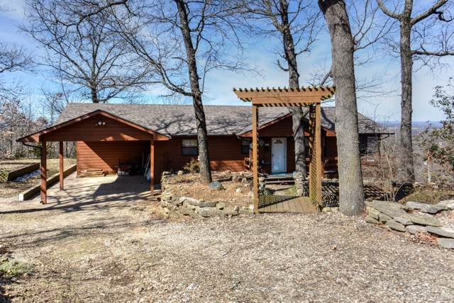 251 Trace Hollow Road, Lampe, MO 65681 (MLS #60149633) :: Sue Carter Real Estate Group