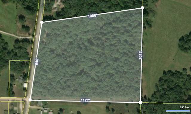 00 State Hwy Bb, Seymour, MO 65746 (MLS #60149642) :: Sue Carter Real Estate Group