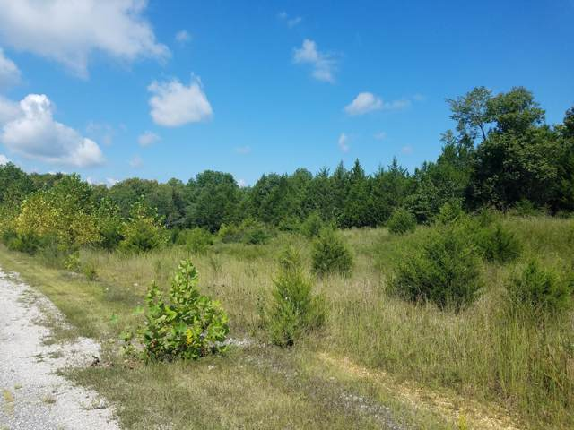 Lot  92 Niangua Ranch Road, Marshfield, MO 65706 (MLS #60149656) :: Sue Carter Real Estate Group