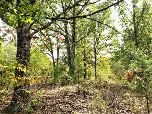 0 Highway W/County Rd. W-264&255, Vanzant, MO 65768 (MLS #60149658) :: Massengale Group